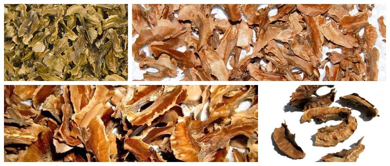 Перегородки и скорлупа грецких орехов для здоровья и красоты