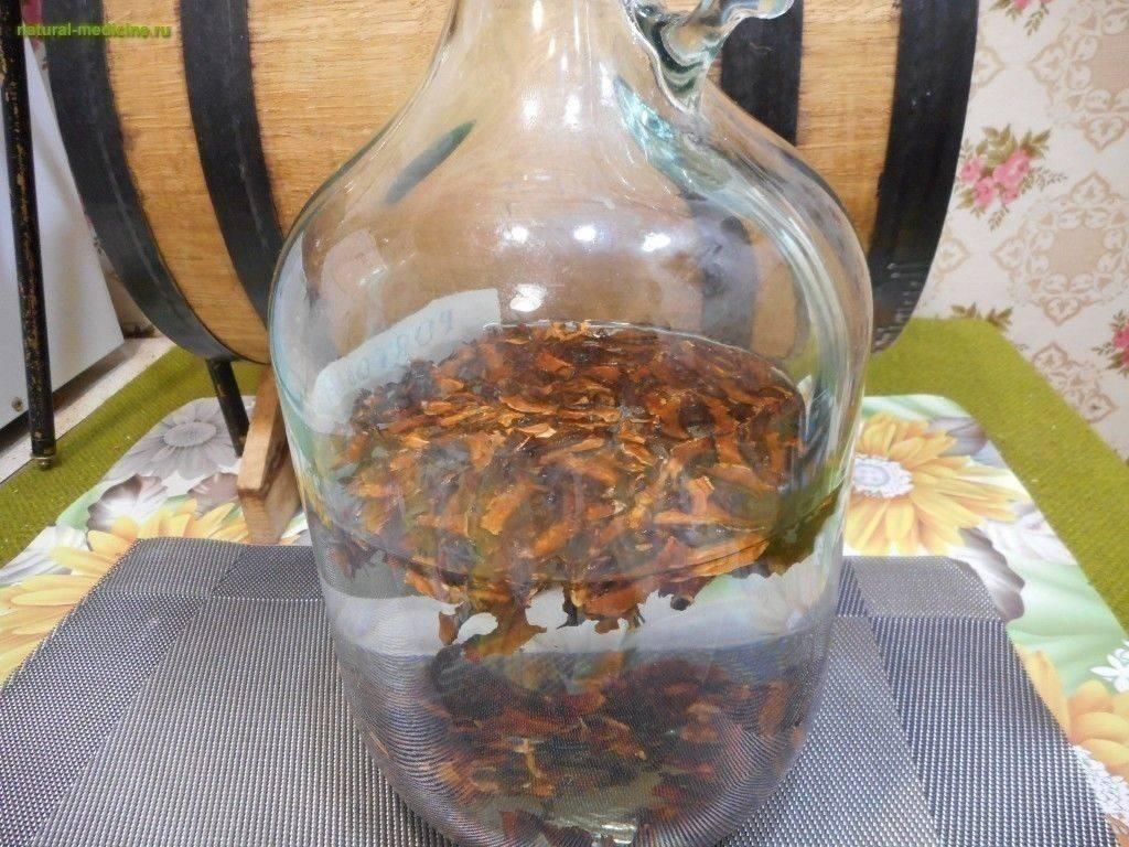 Водка на орехах (кедровых и грецких) – два рецепта настоек