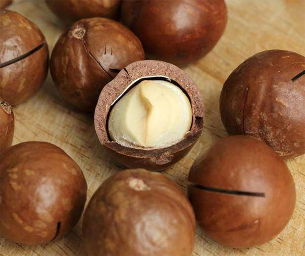 Орехи, которые открывают ключом: как называются надпиленные твердые круглые сладкие орешки макадамии, чем делают специальный надрез, щель в их коричневой скорлупе?