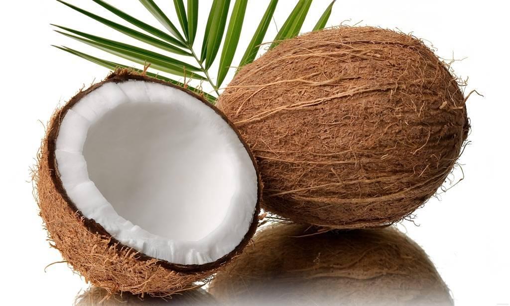 Как выбрать вкусный кокос и проверить на свежесть