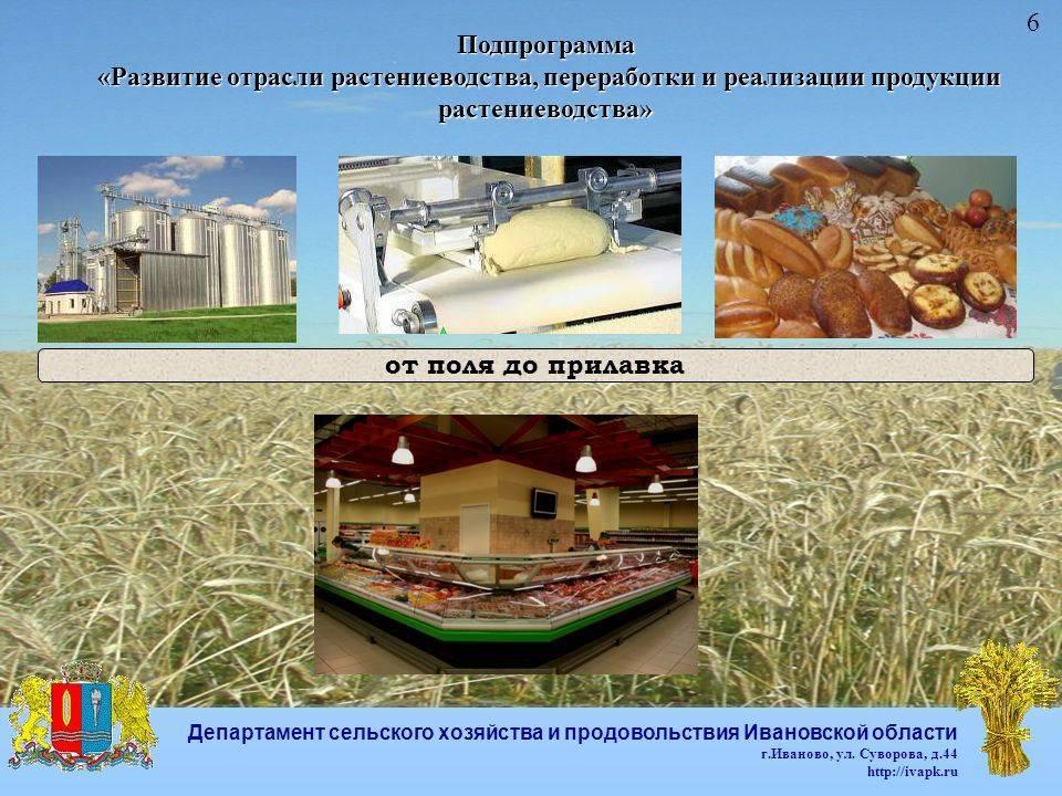 Классификация мяса: виды, методы переработки