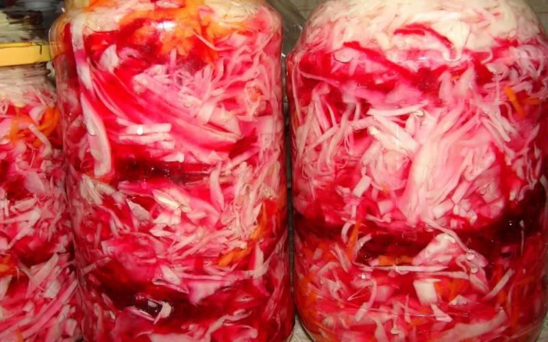 Капуста со свеклой на зиму: самые вкусные и простые рецепты приготовления