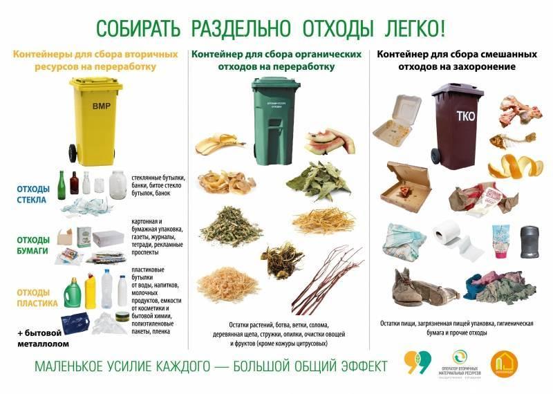 Пищевые (органические) отходы: что это, правила утилизации, класс опасности