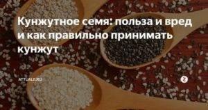 О свойствах кунжута и его влиянии на организм