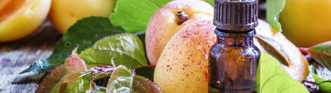 О сферах применения абрикосового масла