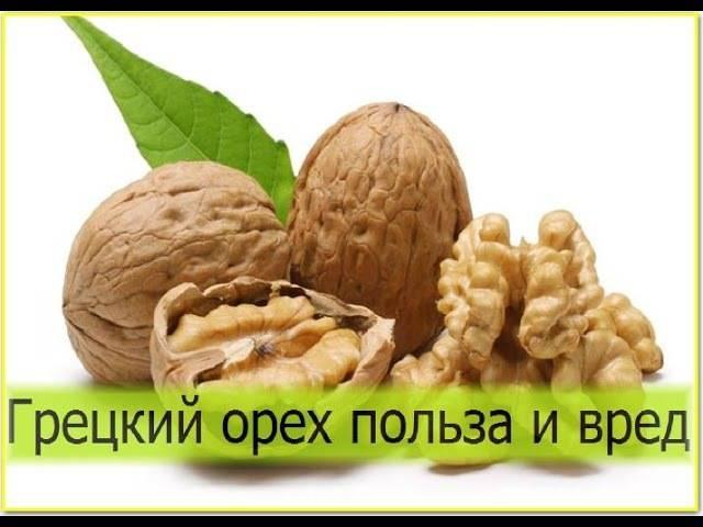 Польза грецких орехов для женщин: состав, положительное влияние на организм и вред, применение в косметологии