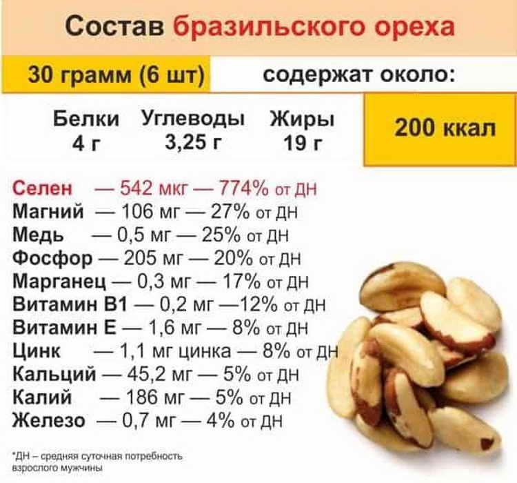 Арахис. химический состав. полезные свойства. кому можно. противопоказания и вред. калорийность. полезные советы.