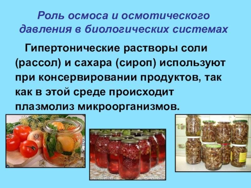Микробиологический контроль производства консервов   pkl