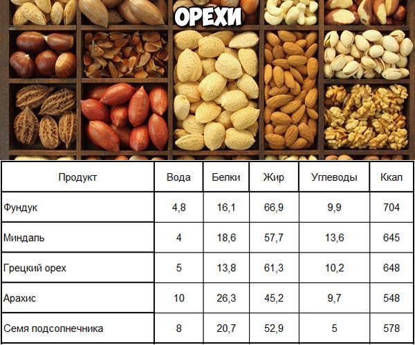 Кедровые орехи: калорийность, польза и вред для организма, противопоказания