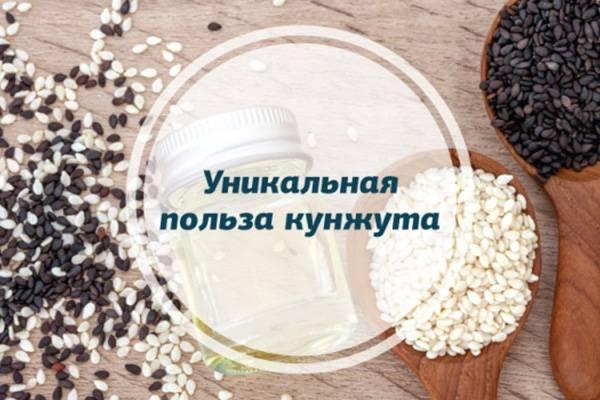 Свойства кунжута: польза и вред для здоровья человека