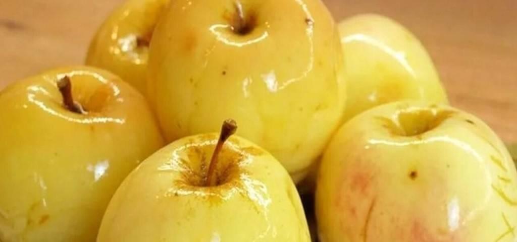 Малосольные огурцы с яблоками, хреном, чесноком, укропом, душистым перцем, вишневыми и смородинными листочками «горячий способ»