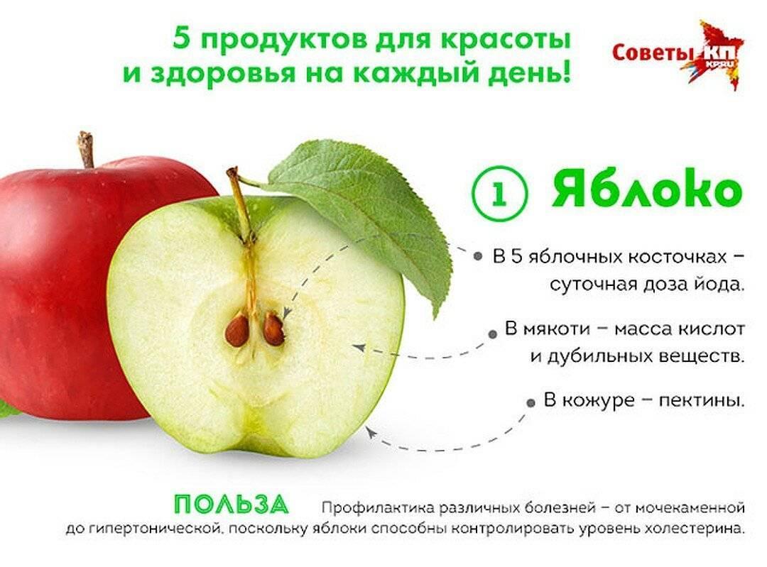 Яблочные семечки: польза и вред для здоровья, что в них содержится