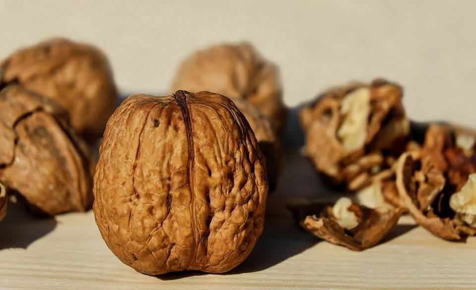 Можно ли есть фундук при похудении, толстеют ли от фундука и сколько можно есть орехов в день