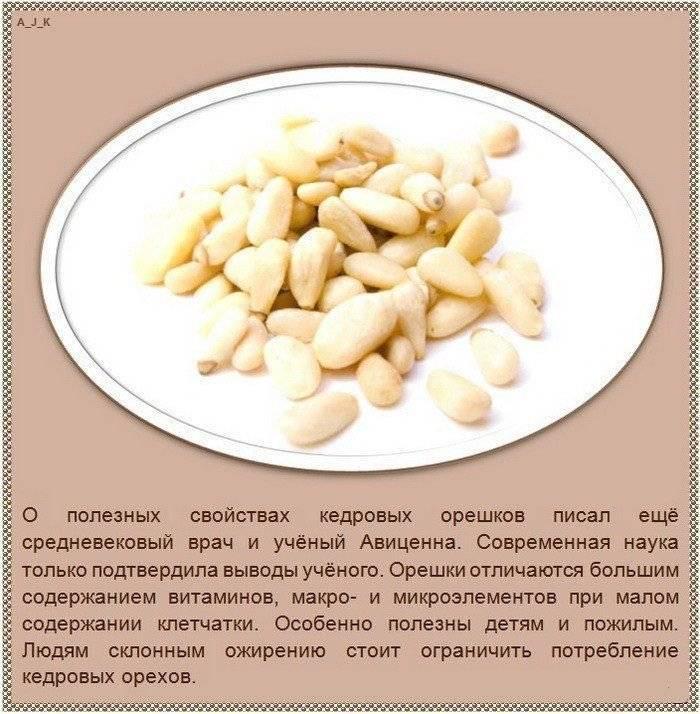 Кедровые орехи - польза и вред. лечебные свойства ядра, скорлупы, масла и настойки кедрового ореха
