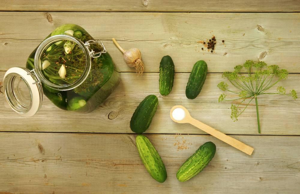 Знакомые и такие разные малосольные огурцы: с водкой, соком, минералкой. лучшие рецепты хрустящих малосольных огурцов на любой вкус