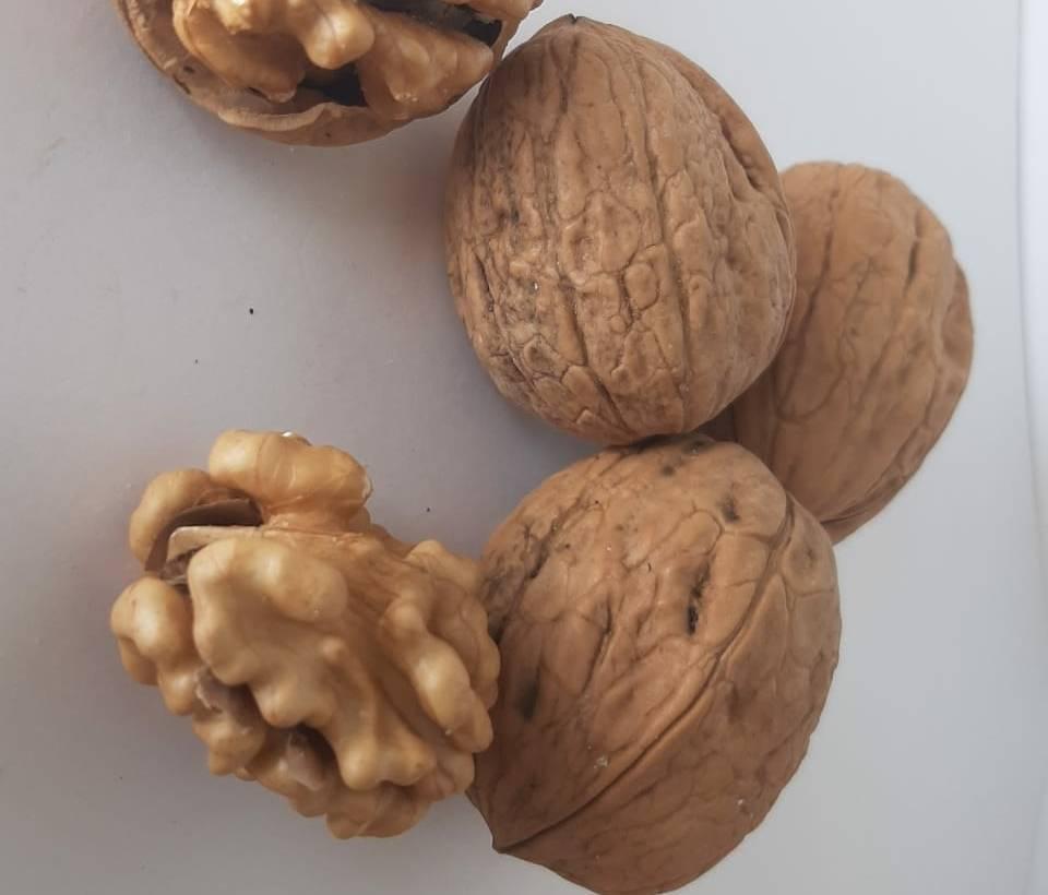Что полезнее миндаль, фундук, арахис, грецкий или бразильский орех