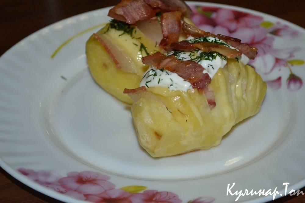 Картошка-гармошка с беконом и сыром в духовке - сайт о доме и семье