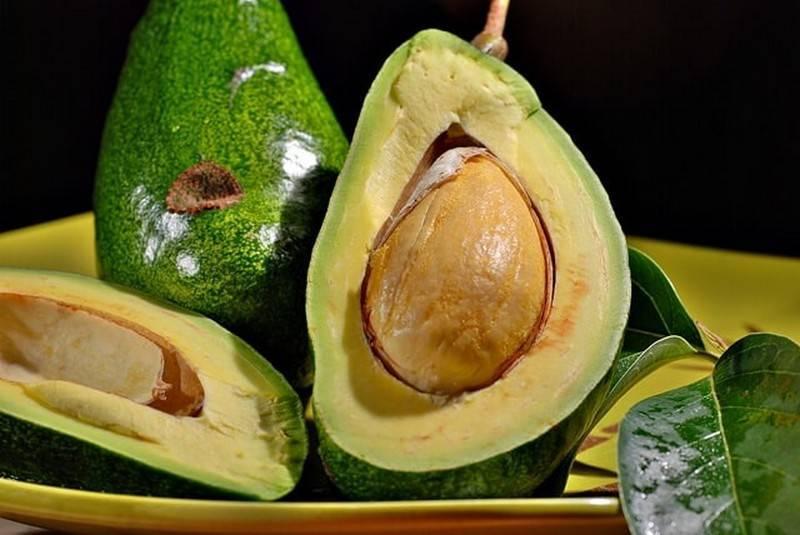Чем полезна для человека косточка авокадо