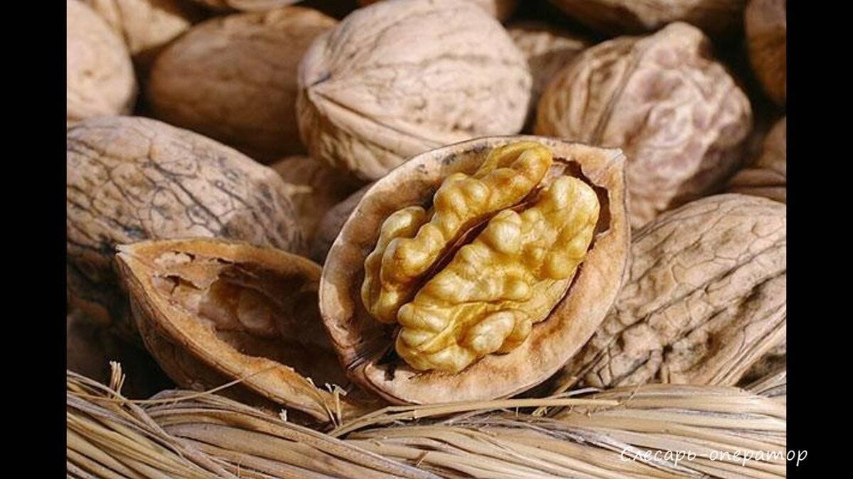 Орехи при беременности: польза, вред, суточные нормы