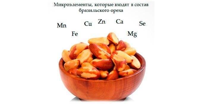 Бразильские орехи: выращивание и употребление