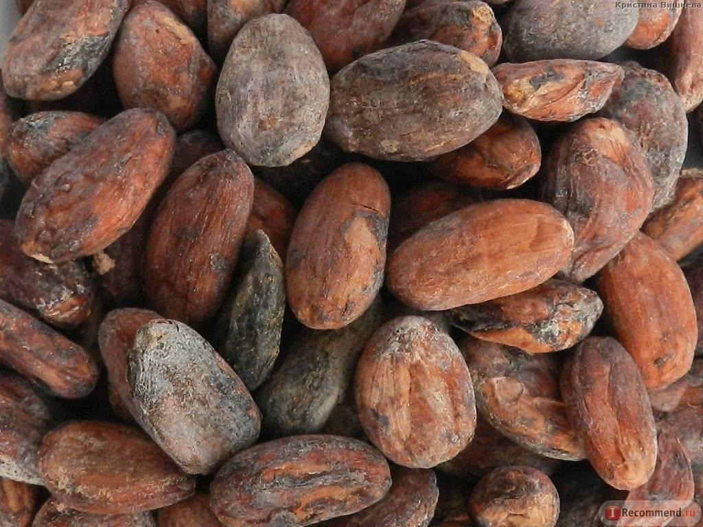 Какао-крупка: что это такое, польза и применение | пища это лекарство