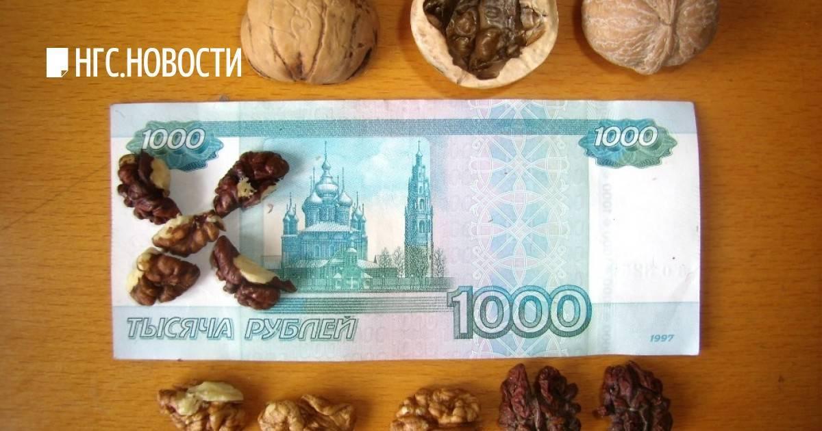 Бизнес на орехах украина – как и сколько можно заработать на выращивании грецкого ореха