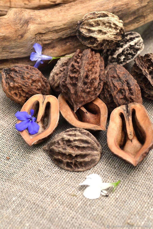 Настойка маньчжурского ореха: на водке, на спирту, применение