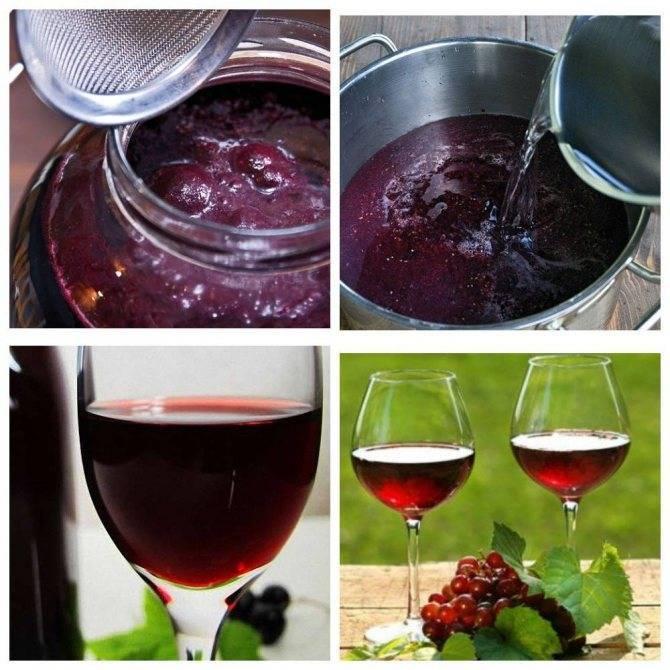 Домашнее вино из варенья — пошаговый рецепт с фото