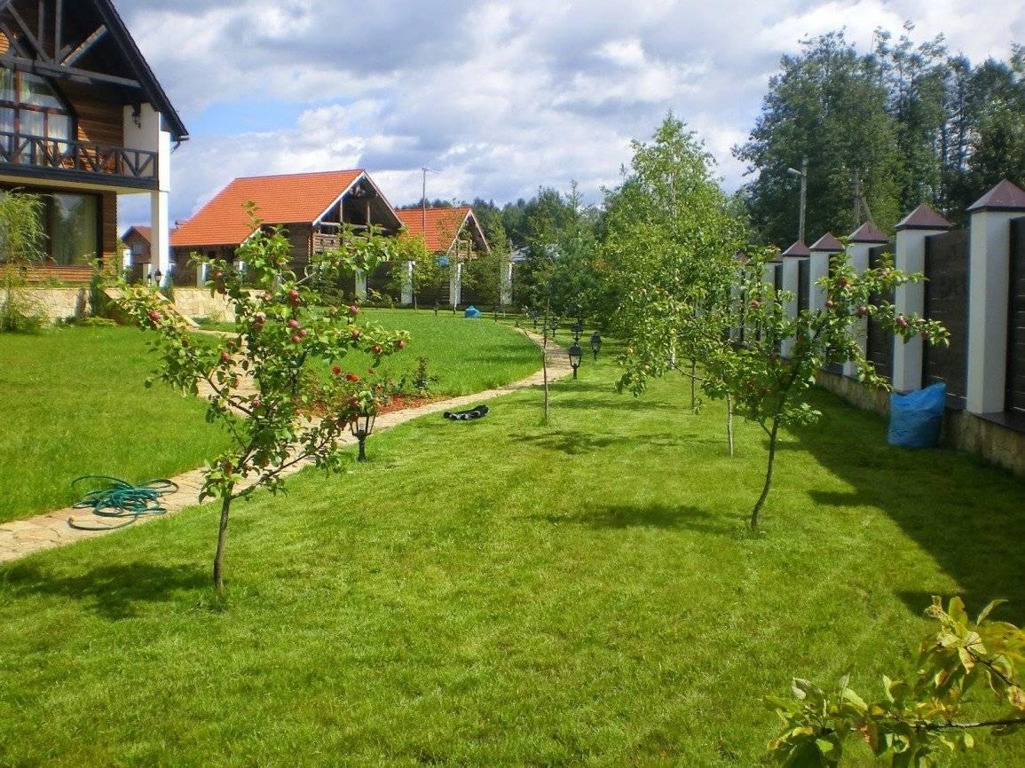 Как получить землю бесплатно, сколько земли дают бесплатно и какие документы нужны - 112 украина