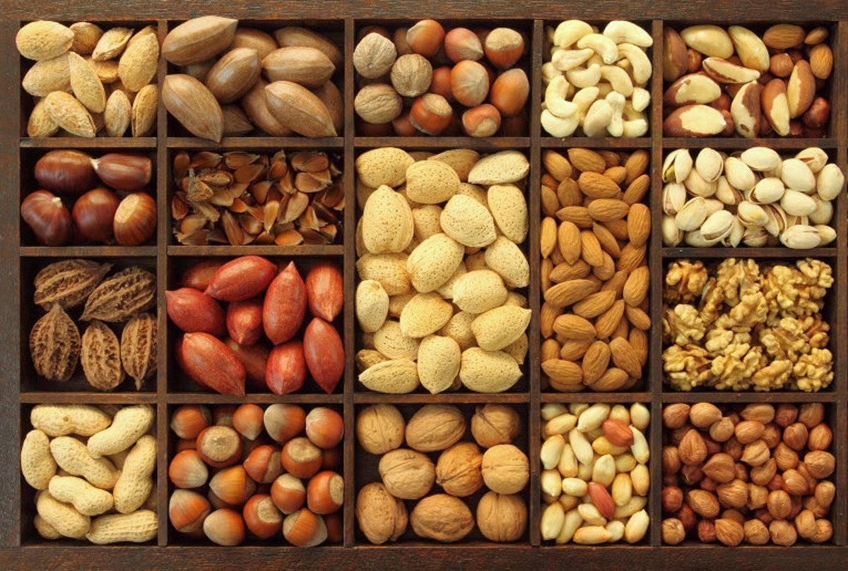 Поделки из орехов: 135 фото и видео мастер-класс изготовления поделок при помощи ореха и ореховой скорлупы