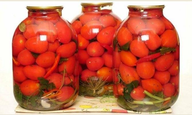 Как засолить помидоры на зиму холодным способом   фоторецепт