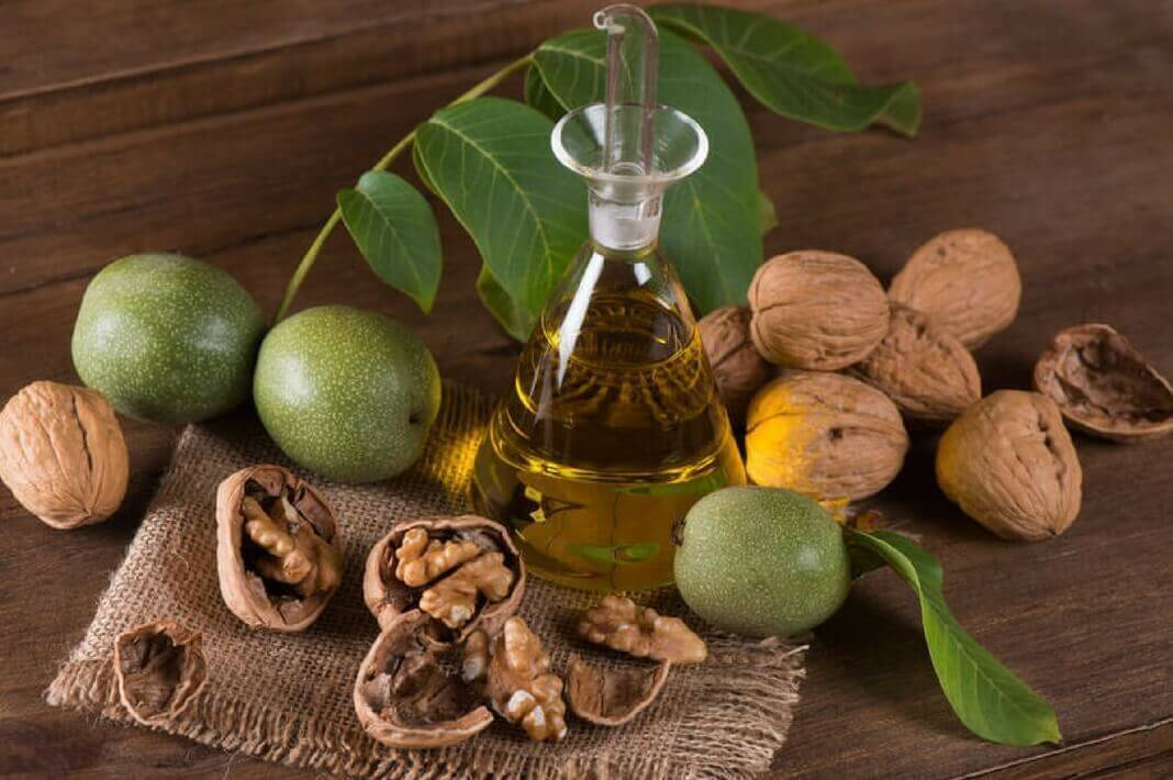 Зеленый грецкий орех: полезные свойства и вред, отвар, варенье и лечебные настойки