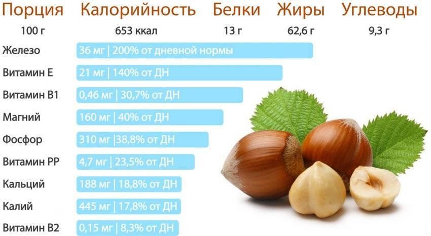 Кедровые орехи — польза и вред, свойства и противопоказания