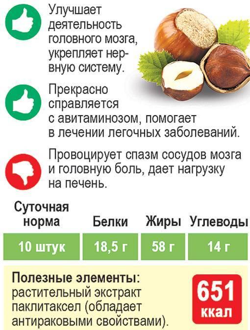 Таблица калорийности орехов: низкокалорийные и самые калорийные - орех эксперт