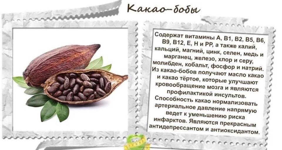 Полезное питание: что такое какао-бобы и как их применять?