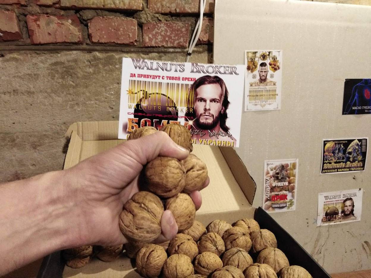 Кто украл 90 тыс грецкого ореха в Украине?