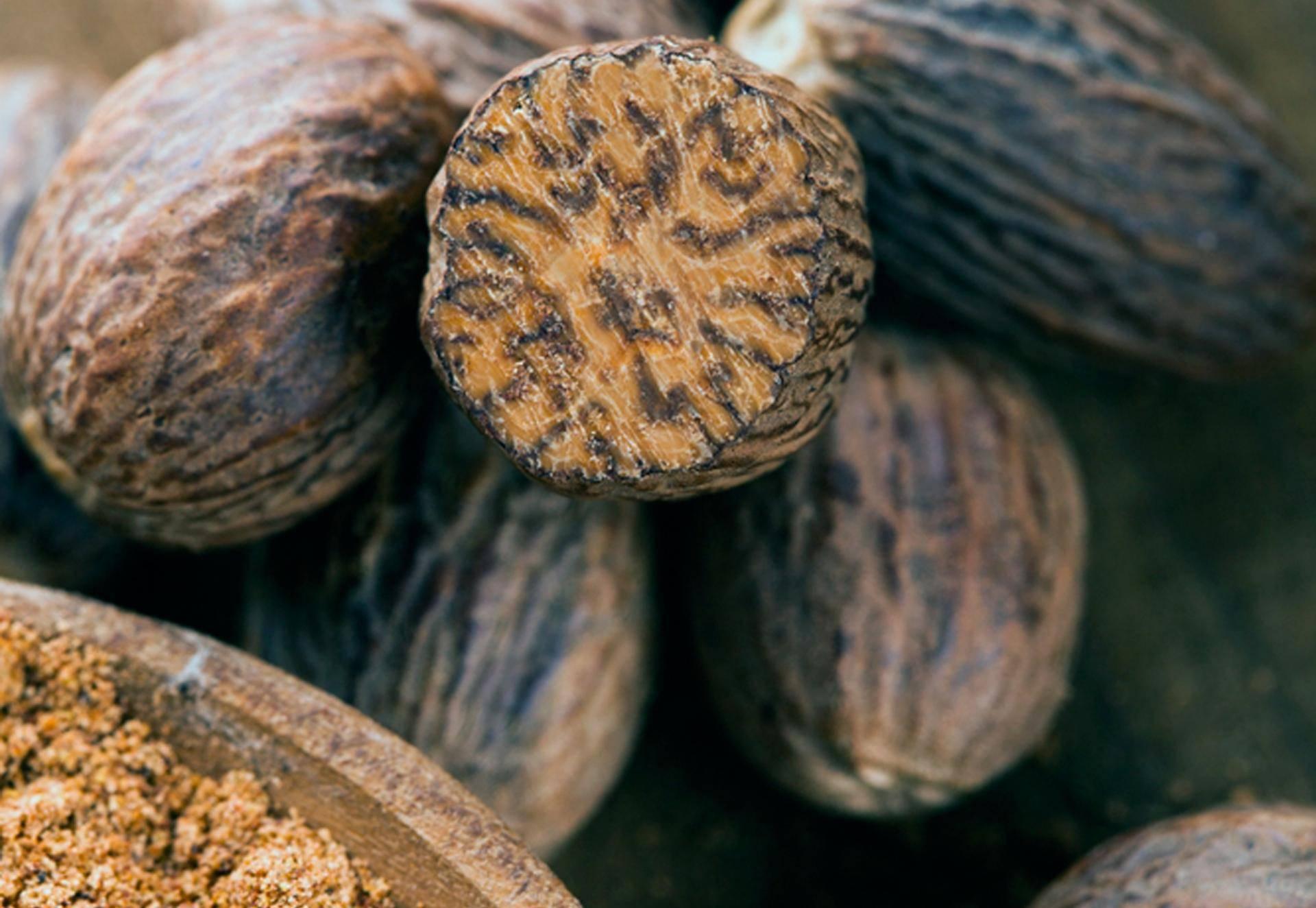 Лемонграсс: что это такое, полезные свойства и противопоказания, чем пахнет, применение в кулинарии
