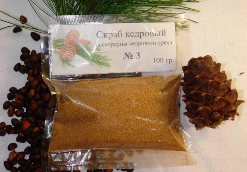 Польза, вред, состав и широкое применение скорлупы кедрового ореха