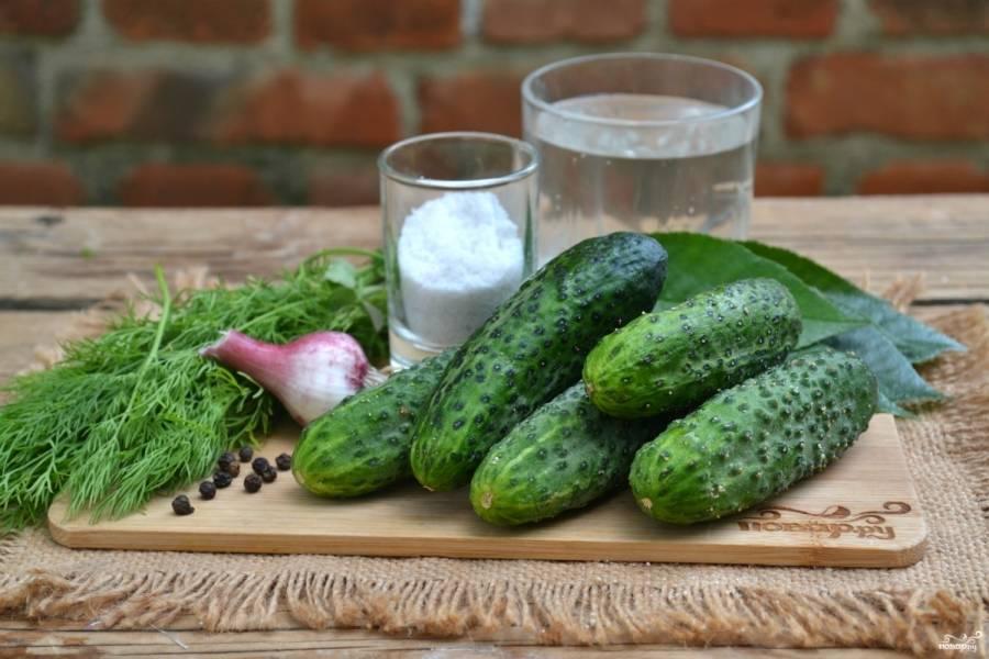 Соленые огурцы холодным способом на зиму – 8 очень вкусных рецептов