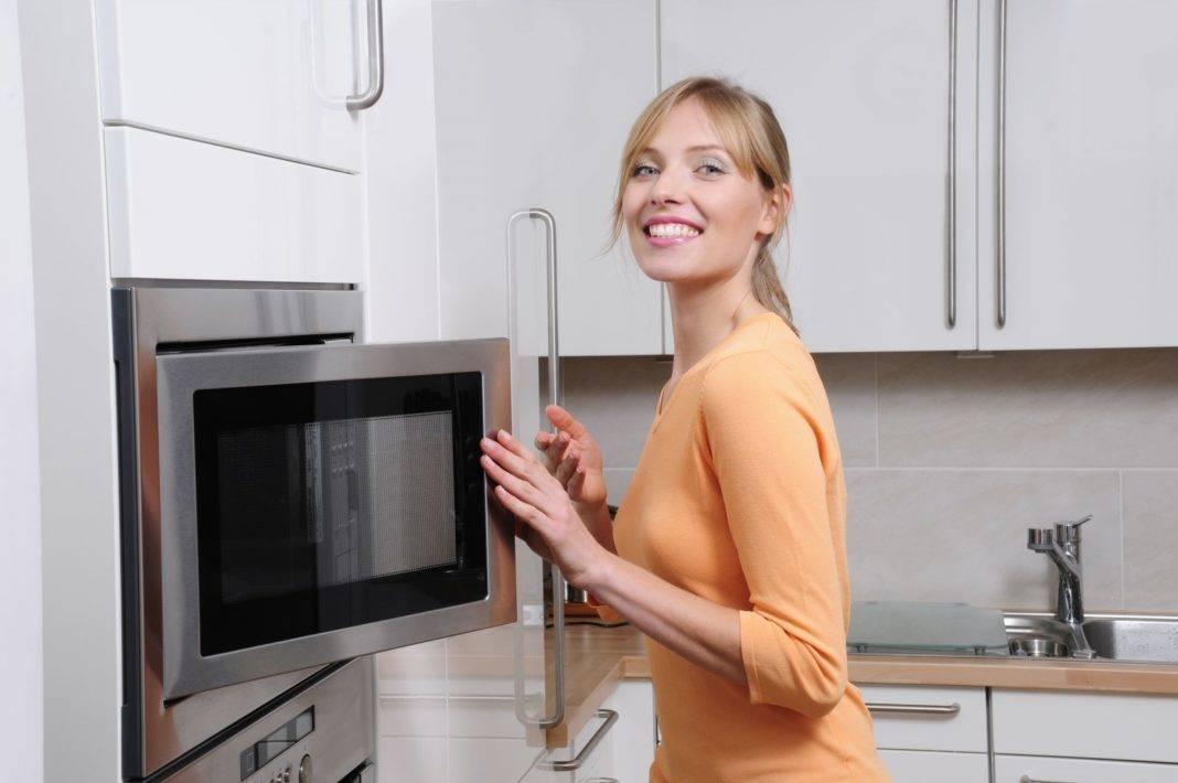Что лучше выбрать микроволновую печь или электрическую печь