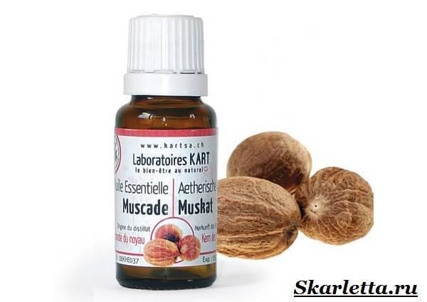 Масло мускатного ореха: применение, полезные свойства и противопоказания