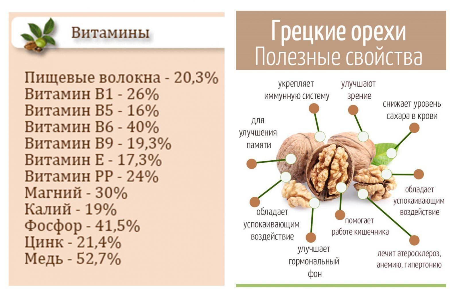 Грецкие орехи: польза и вред для организма | польза и вред