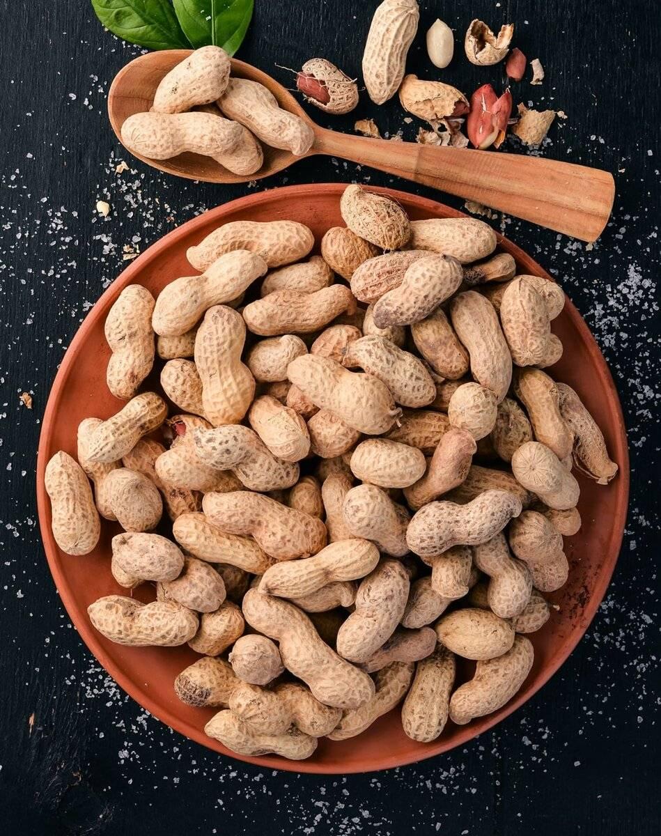 Арахис — лечебные свойства, применение и рецепты