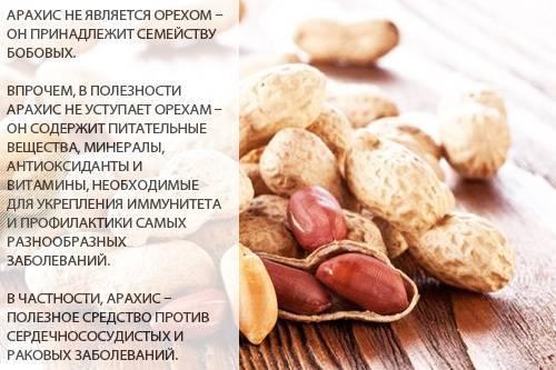 «Запретный плод — сладок». Можно ли есть арахис при гастрите в ограниченном количестве или нет?