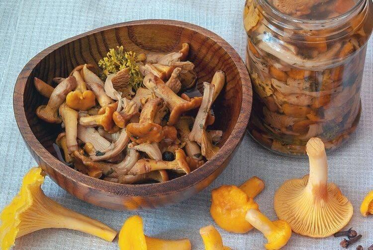 Грибы маринованные на зиму – 7 лучших рецептов приготовления