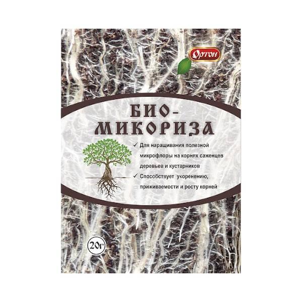 Микробиология почвы - soil microbiology