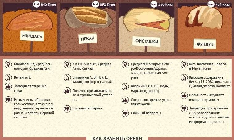 Орехи при гастрите: особенности питания в острой и хронической фазе заболевания