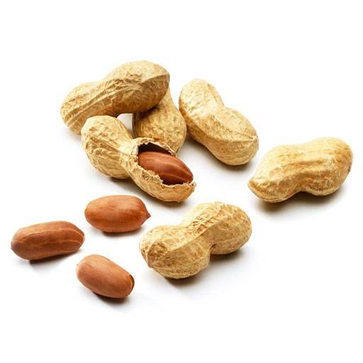 Польза и калорийность арахиса жареного и сырого