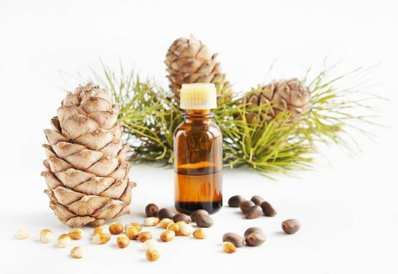 Ценное масло кедрового ореха: виды, химический состав, польза и вред, приготовление и применение