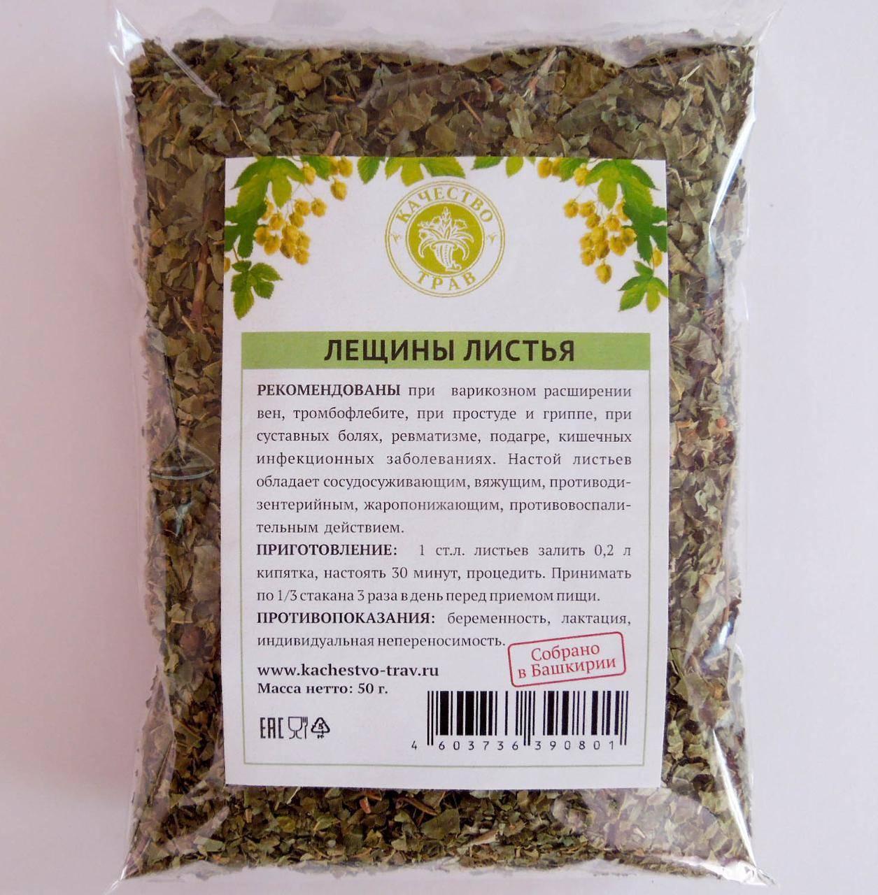 Лещина - полезные свойства и противопоказания к применению плодов, коры и листьев орешника лещина